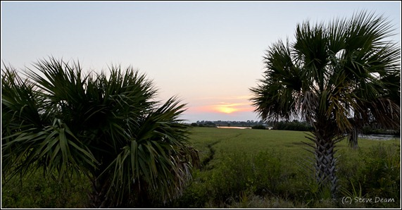 A view from Airport road in Cedar Key
