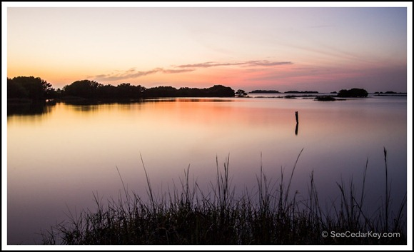 Twilight over the bayou - Cedar Key