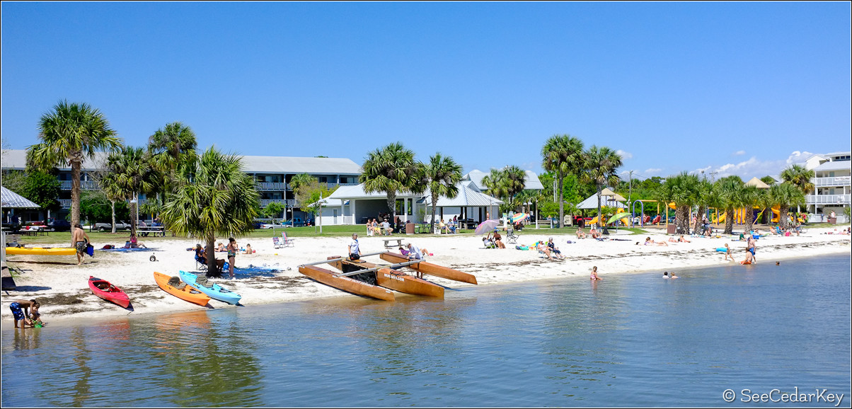 Cedar Key Busy beach