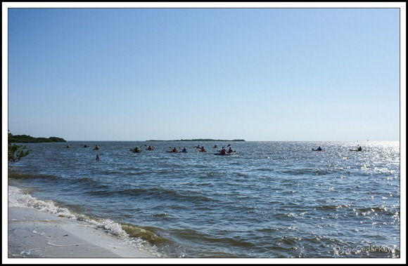 Cedar Key Kayakers-1
