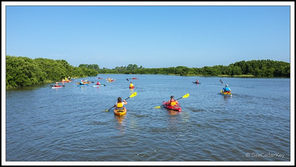 Cedar Key Kayakers-2