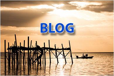 Cedar Key blog