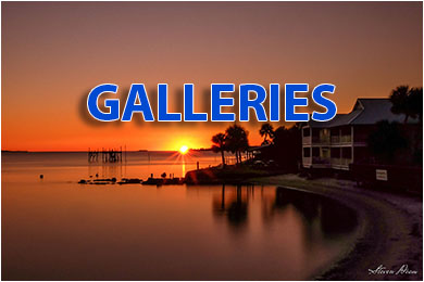 Cedar Key Galleries