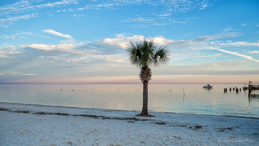 Beaches Around Dunedin Fl