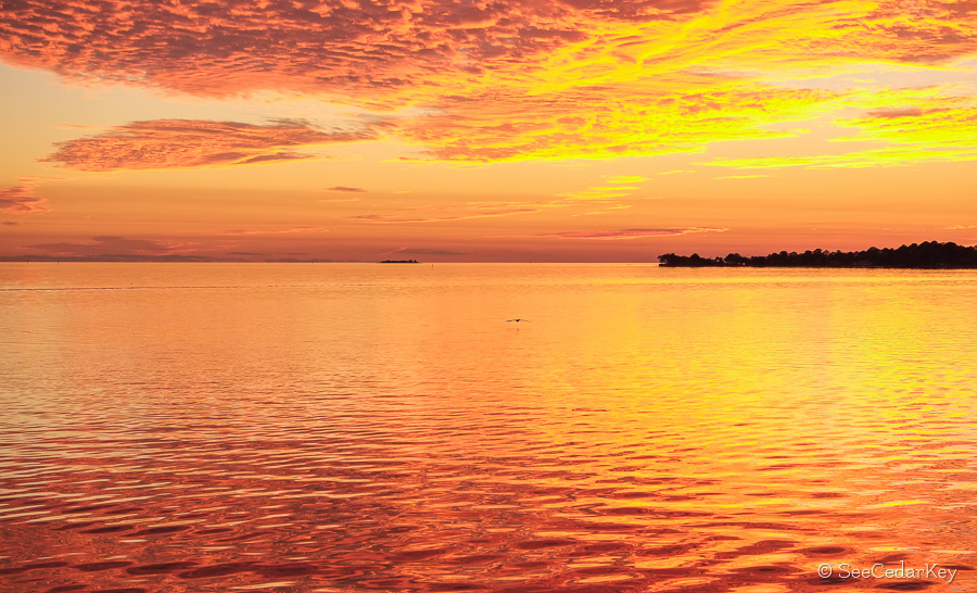 Sunset at Cedar Key Florida