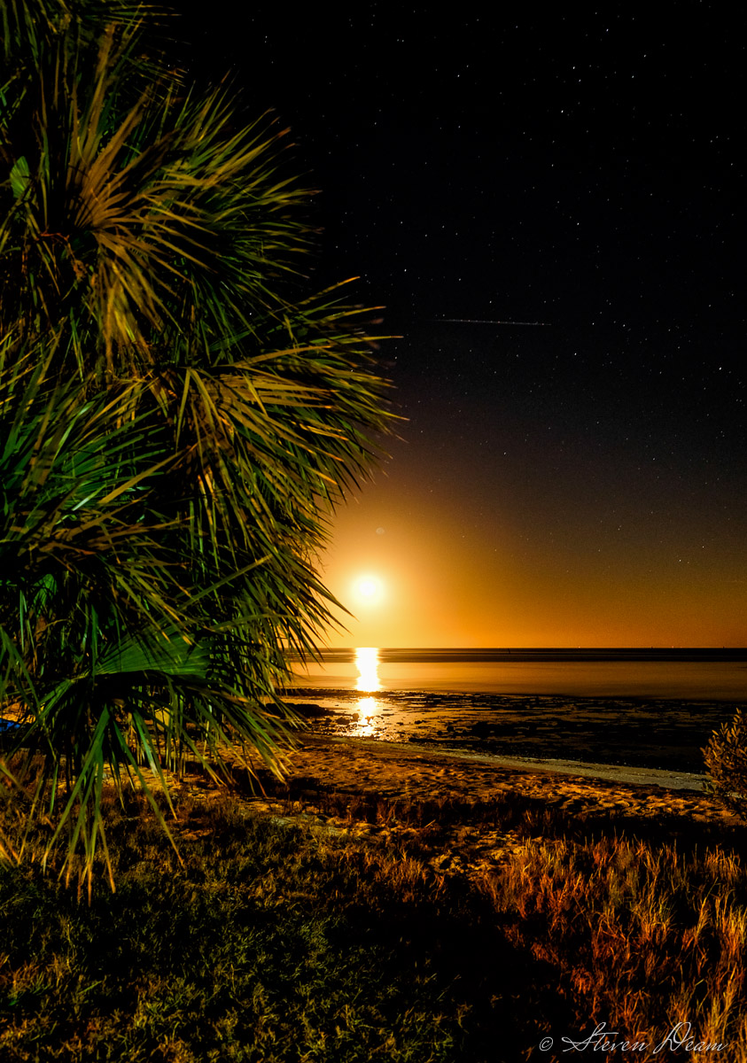 Moonrise in Cedar Key