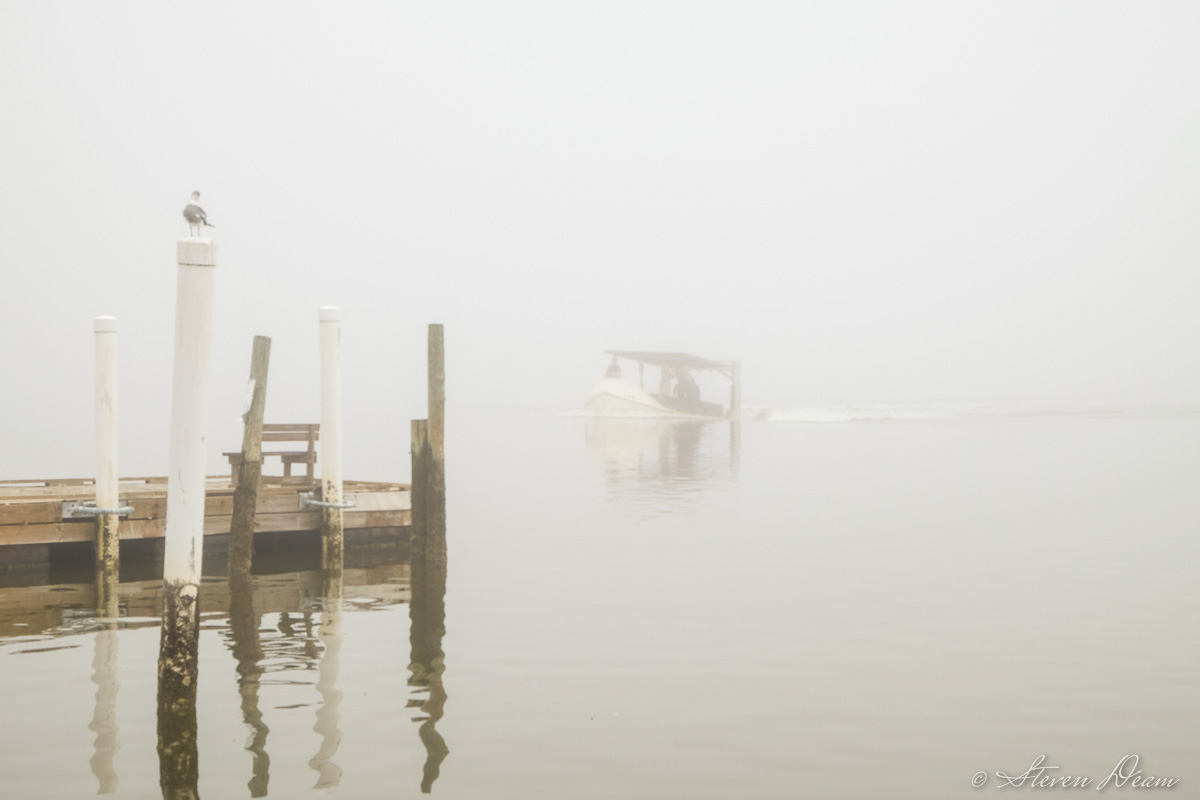 Cedar Key fog