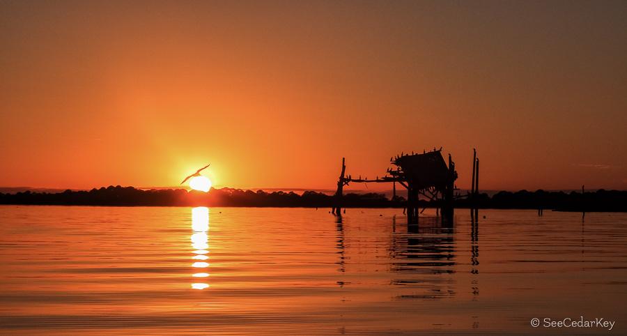 A Cedar Key sunset