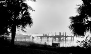 Cedar Key in Black White-10.jpg