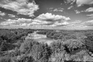 Cedar Key in Black White-3.jpg
