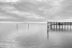 Cedar Key in Black White-5.jpg