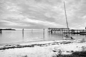 Cedar Key in Black White-6.jpg