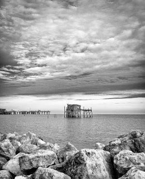 Cedar Key in Black White-7.jpg