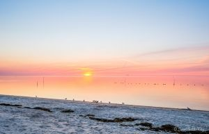 Cedar Key Sunrise 020313-2.jpg